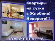 Отличная квартира на сутки в Жлобине! Н Е Д О Р О Г О !!! +375-29-111-94-48 +375-29-302-12-36
